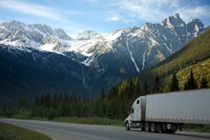 Tips for Choosing an International Moving Company