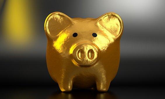 Piggy, Bank, Money, Finance, Business