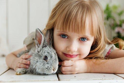 Rabbit, Hare, Baby, Girl, Studio, Toy