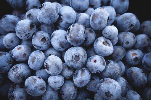 Blueberries, Fruits, Blue, Berries