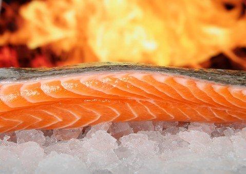 Salmon, Fish, Food, On Ice, Grilled, Bbq